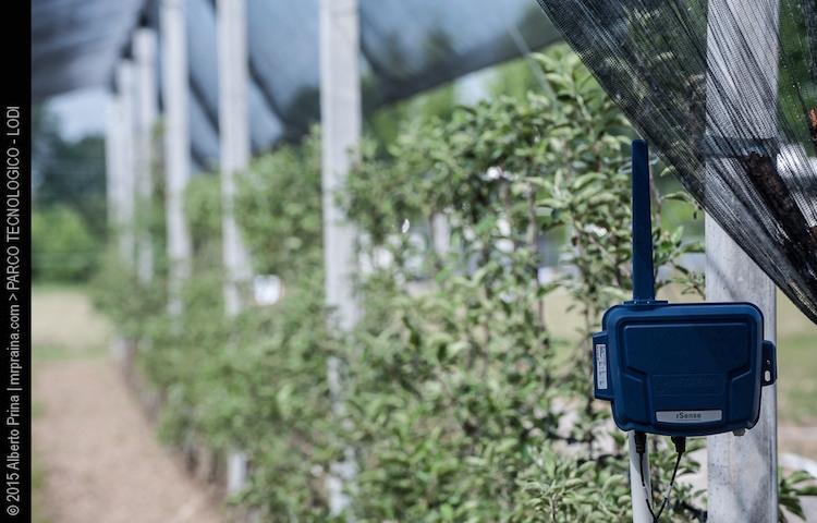 Netafim gestire l irrigazione in pieno campo for Netafim irrigazione
