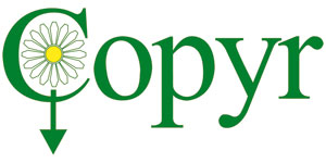 copyr-logo-web-2010