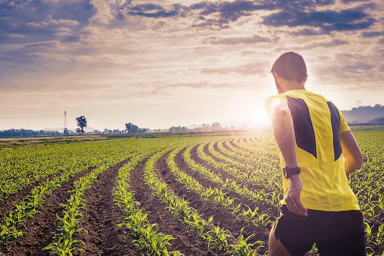 correre-campi-campo-fattoria-sportiva-by-giorgio-pulcini-adobe-stock-750x500.jpeg