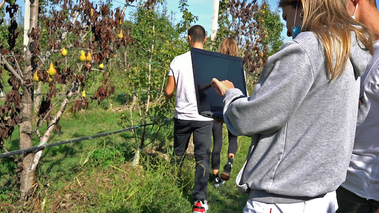 corso-digital-farming-specialist-pc-field-diritti-formart-20211018