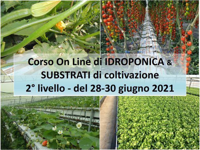 corso-livello-2-idroponica-subrstrati-giu2021