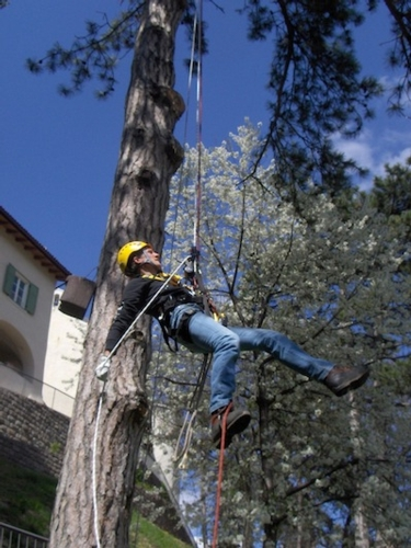 corso_tecnico_arboricoltore_iasma
