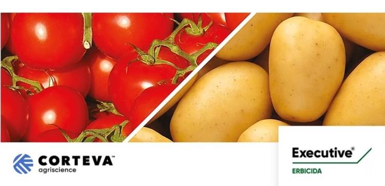 corteva-executive-pomodoro-20211