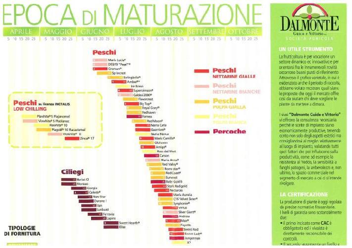 Calendario Maturazione Albicocche.Notizie Su Dalmonte Guido E Vittorio Societa Agricola In
