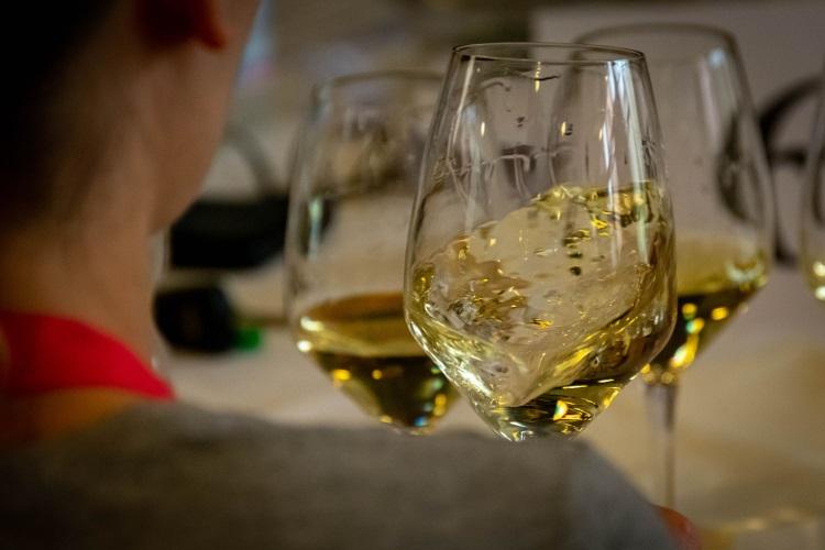 degustazione-vino-vini-bicchiere-fonte-onav-750x500
