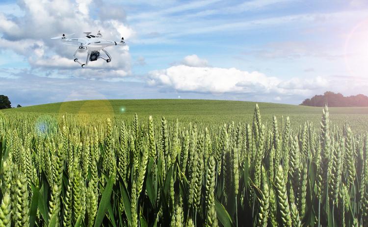 drone-campo-fonte-ilc.jpg