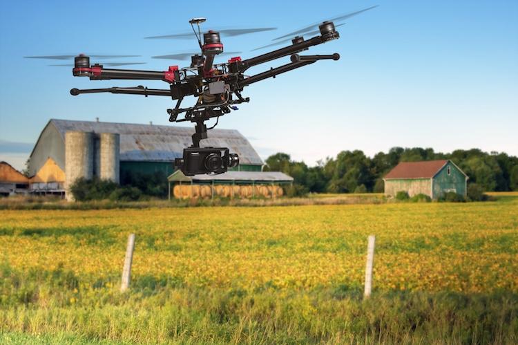 Droni, l'impiego in agricoltura