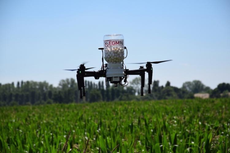 drone-egm-96-2.jpg