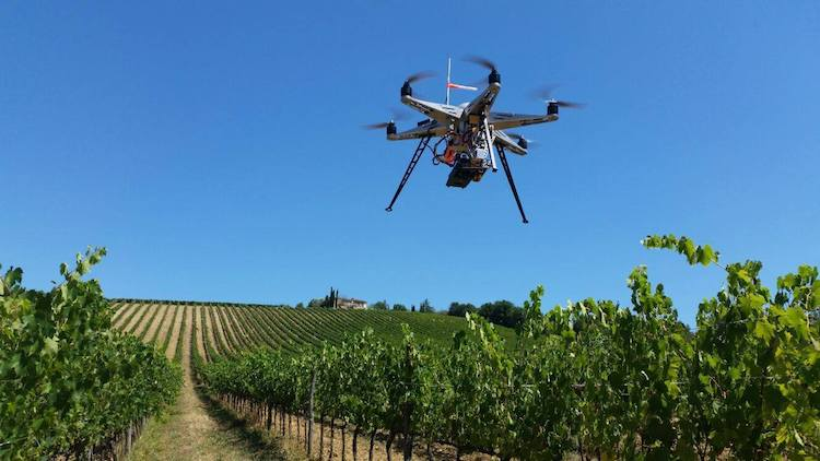 drone-viticoltura-vigneto-digitale-cnr-fonte-facebook-agricoltura-precisione-cnr