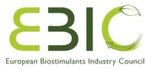 ebic-logo-2013