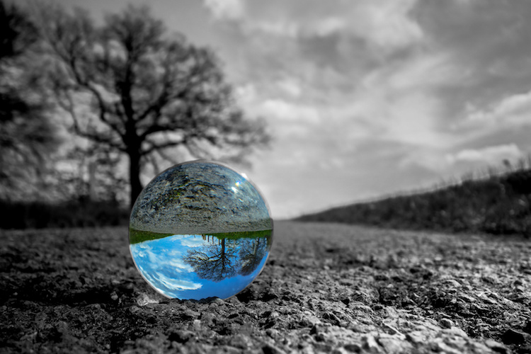 ecologia-ambiente-sostenibilita-natura-sfera-by-stefan-fotolia-750