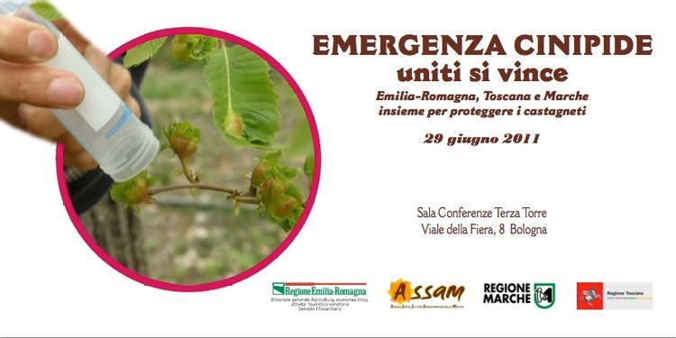 emergenza-cinipide-2011