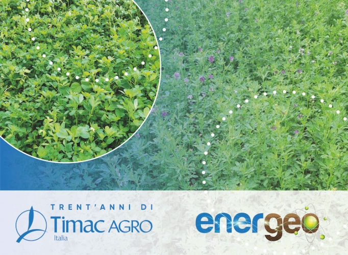Energeo<sup>®</sup>: da TIMAC AGRO Italia più energia alla terra - le news di Fertilgest sui fertilizzanti
