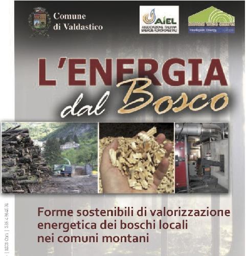 energia_dal_bosco_aiel