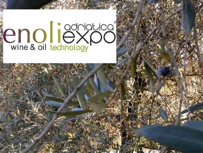 enoliexpo-logo-foto-olio-modificata-750-by-enoliexpocom