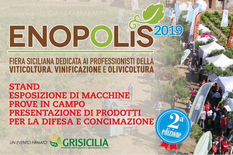 Enopolis 2019