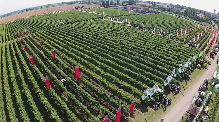 enovitis-in-campo-2018-panoramica-schermata-video-agri-luke