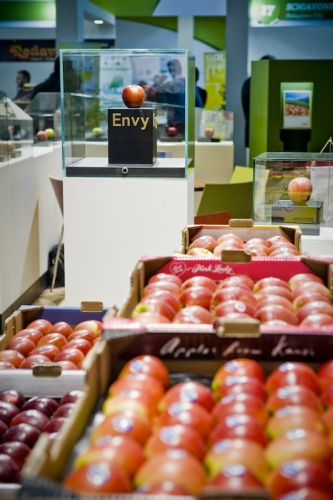 envy-fruit-logistica-2016