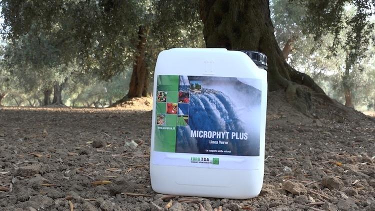 euro-tsa-microphyt-plus-olivo-tanica