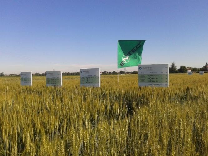eurochem-agro-entec-foto-giugno-2014