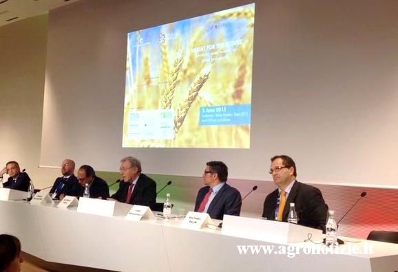 expo-conferenza-frumento-per-il-futuro-3giu15-fonte-tommaso-cinquemani-agronotizie