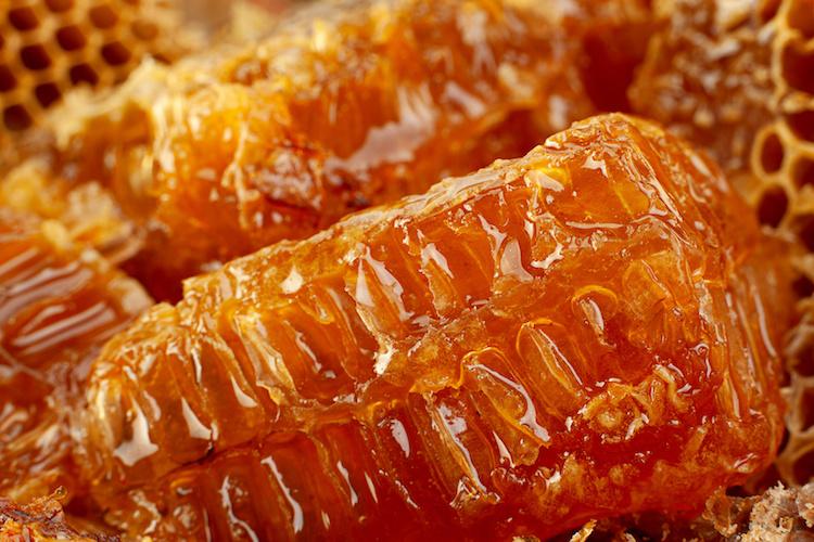 favo-miele-api-apicoltura-alveare-by-leonid-nyshko-fotolia-750