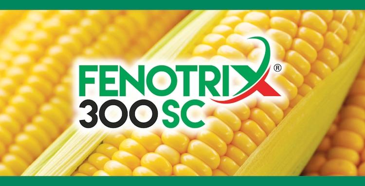 fenotrix-300-sc-sumitomo.jpg