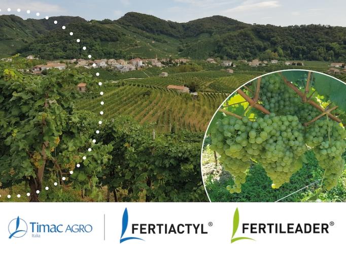 fertiactyl-fertileader-viticoltura-fonte-timac-agro