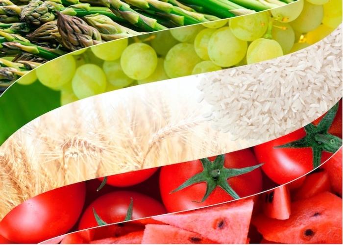 Diemme Italia: dal 1969 a fianco dell'agricoltore italiano - le news di Fertilgest sui fertilizzanti