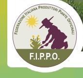 fippo-logo.jpg