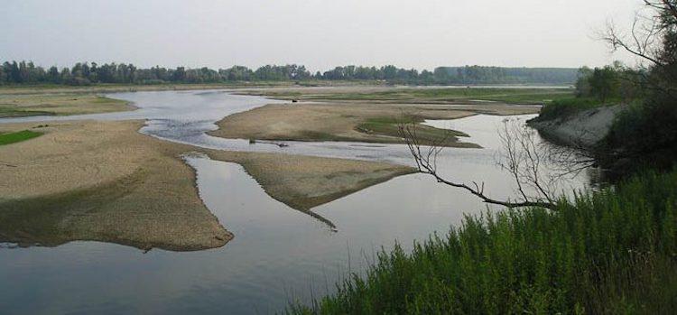 fiume-po-mar-2019-fonte-anbi