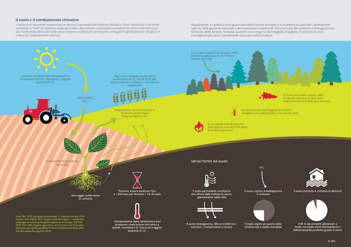 flussi-di-carbonio-nei-suoli-europei-primo-art-rosato-ott-2021-fonte-foto-unione-europea.jpg