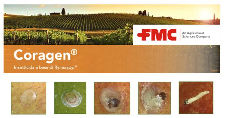 fmc-coragen-post-dem-2020