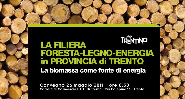 foresta_legno_energia_trento