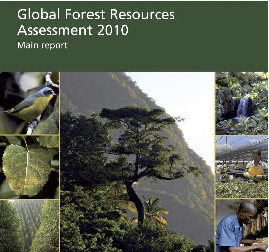 foreste_fao_rapporto2010