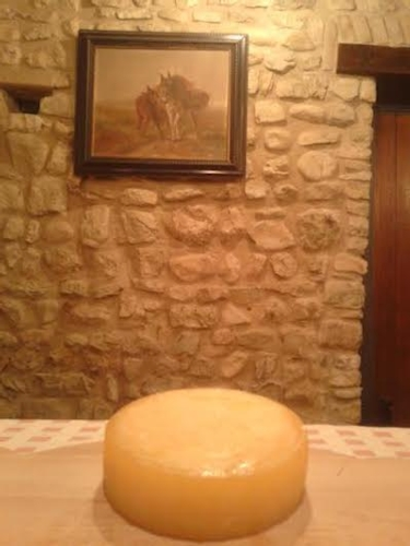 formaggio-latte-asina-expo-2015-emilia-romagna