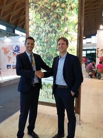 Kiwi, accordo Jingold-Mazzoni - Plantgest news sulle varietà di piante
