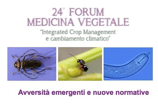 forum-medicina-vegetale-approfondimenti-tecnici