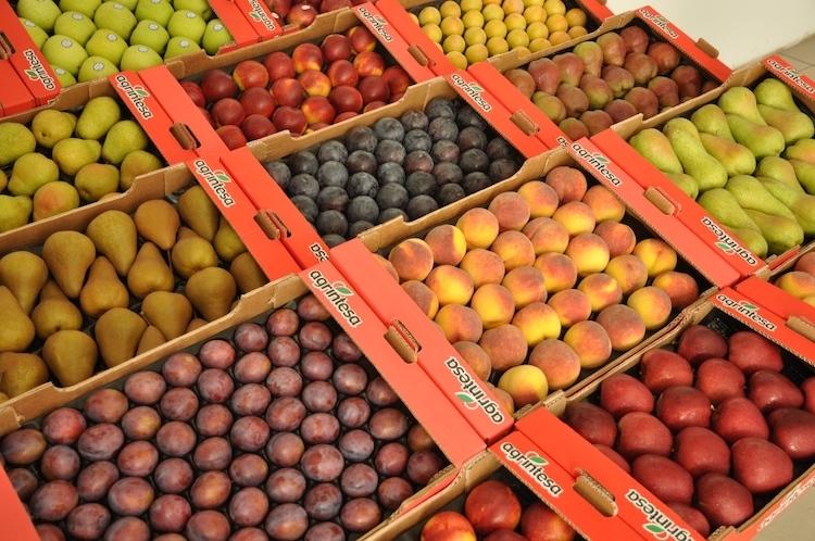frutta-agrintesa-fonte-agrintesa