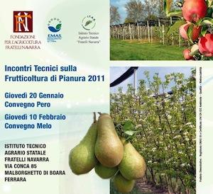 frutticoltura-di-pianura-fondazione-navarra-gennaio-febbraio-2011