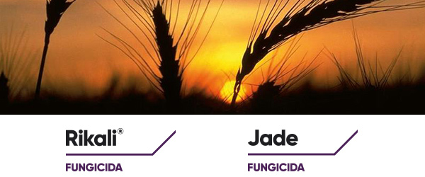fungicidi-rikali-jade-marzo-2021-fonte-corteva