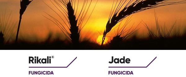 fungicidi-rikali-jade-marzo-2021-fonte-corteva.jpg