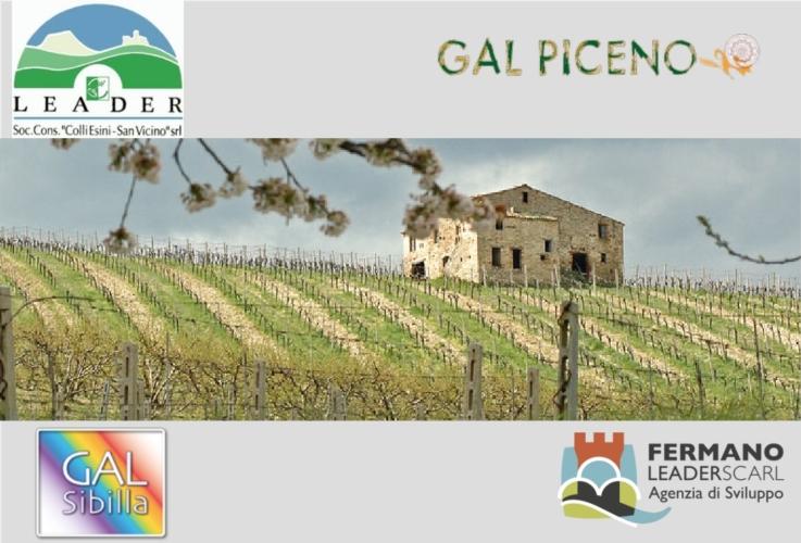 gal-marche-terremoto-loghi-by-gal-piceno-modificato-matteo-giusti-jpg