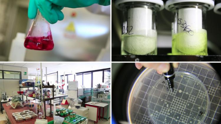 gem-chimica-laboratori.png
