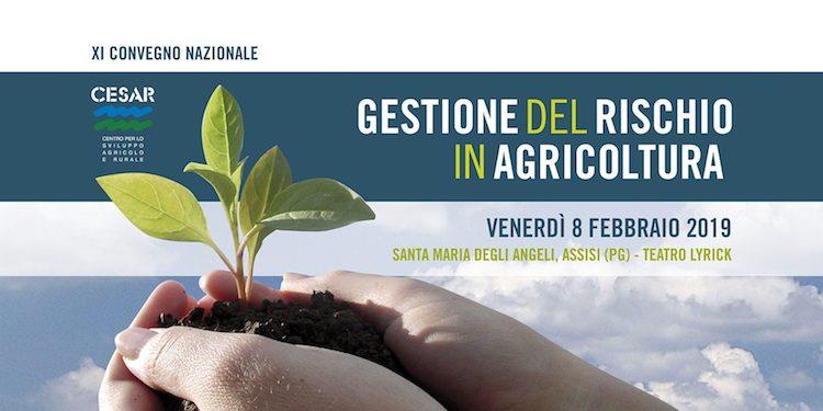 gestione-rischio-agricoltura-2019.jpg