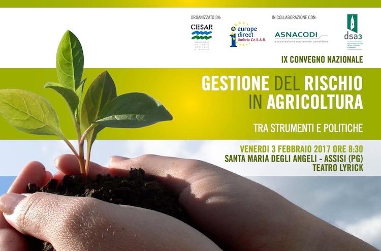 gestione-rischio-agricoltura-tra-strumenti-e-politiche-20170203