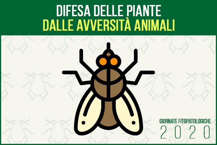 gf2020-difesa-avversita-animali-giornate-fitopatologiche-2020-fonte-agronotizie.jpg