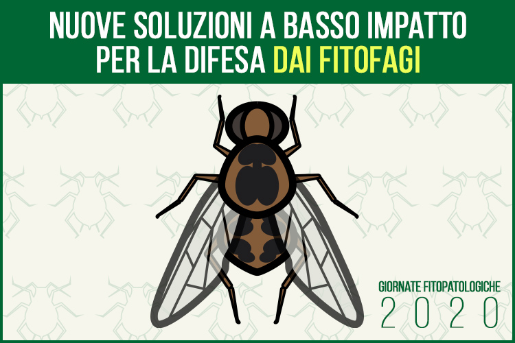 gf2020-difesa-fitofagi-basso-impatto-fonte-agronotizie