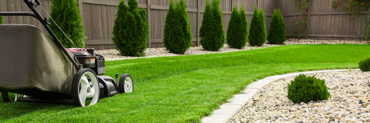 giardinaggio-garden-macchine-by-mariusz-blach-fotolia-750