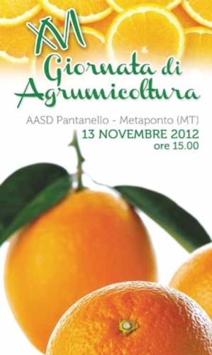 gioranta-agrumicoltura-novembre-2012-alsia.jpg